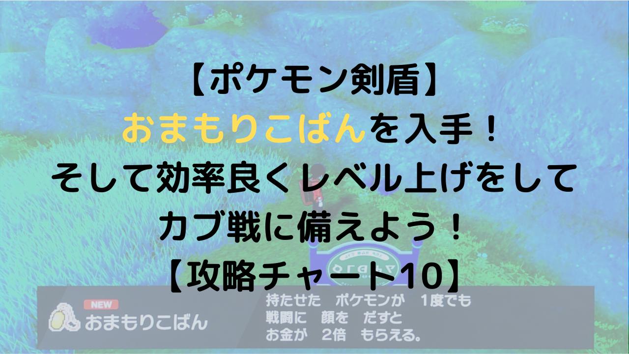 【ポケモン剣盾】 おまもりこばんを入手! そして効率良くレベル上げをして カブ戦に備えよう! 【攻略チャート10】