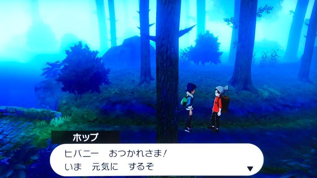 ポケモンソードシールド - まどろみの森回復