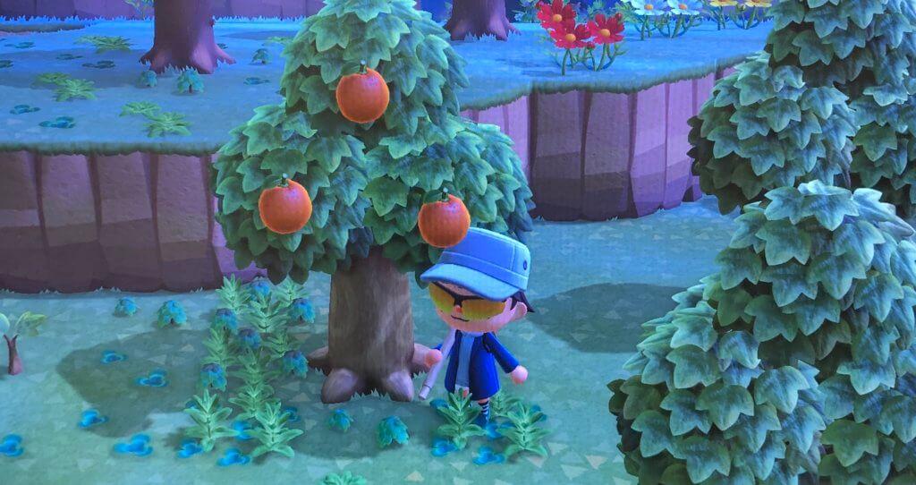 あつまれどうぶつの森 - オレンジ