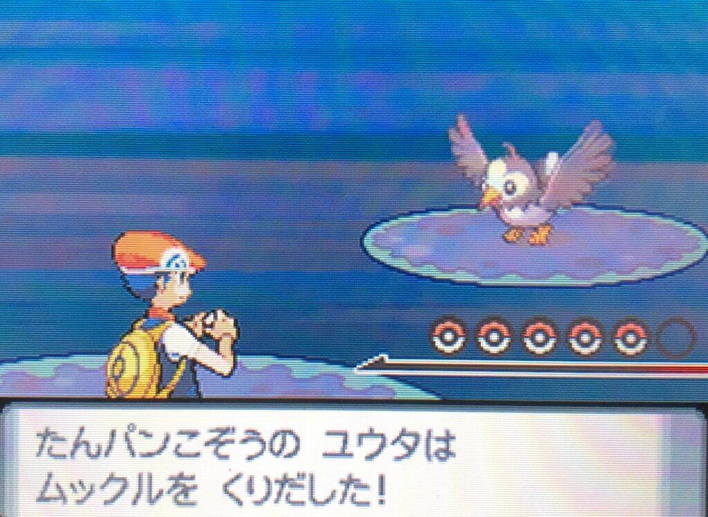 ポケモンダイヤモンド・パール - 初トレーナー戦
